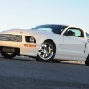 shelby_turbo_4